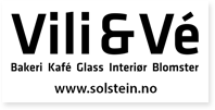 Solstein As Vili&Ve